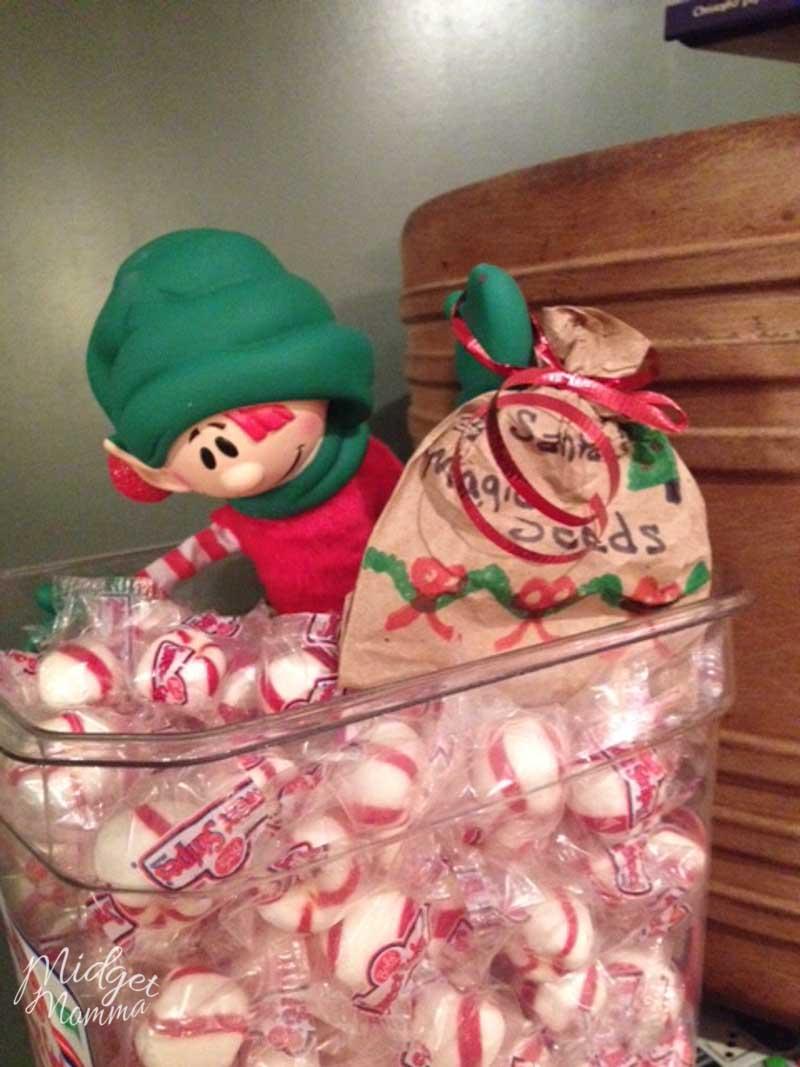 Easy Elf on the Shelf Ideas - elf in the candy jar