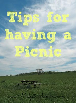 Planning a picnic is fun and easy. This tips will help you make sure that your picnic is a great day for you and your loved ones.