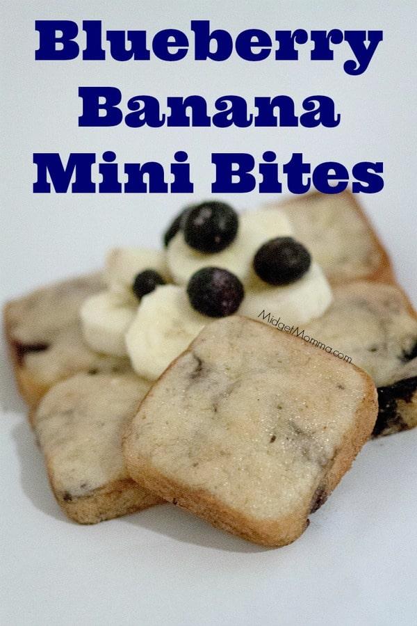 Blueberry Banana Mini Bites