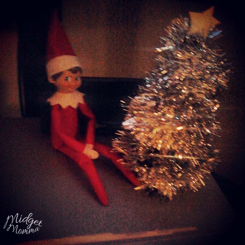 elf on the shelf pictures