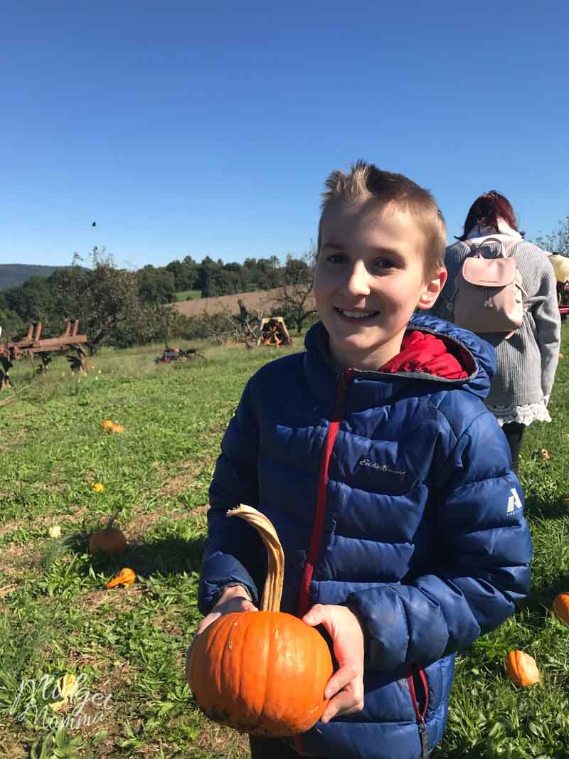 boy holding pumpkin in a pumpkin patch
