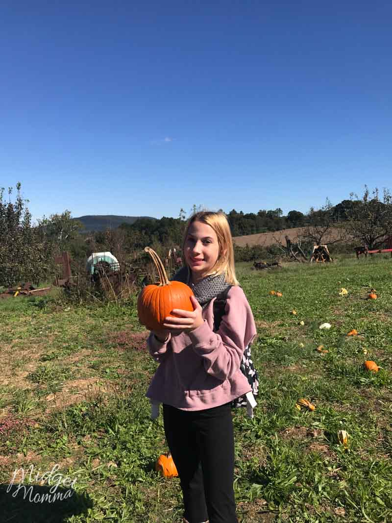 girl holding pumpkin in a pumpkin patch