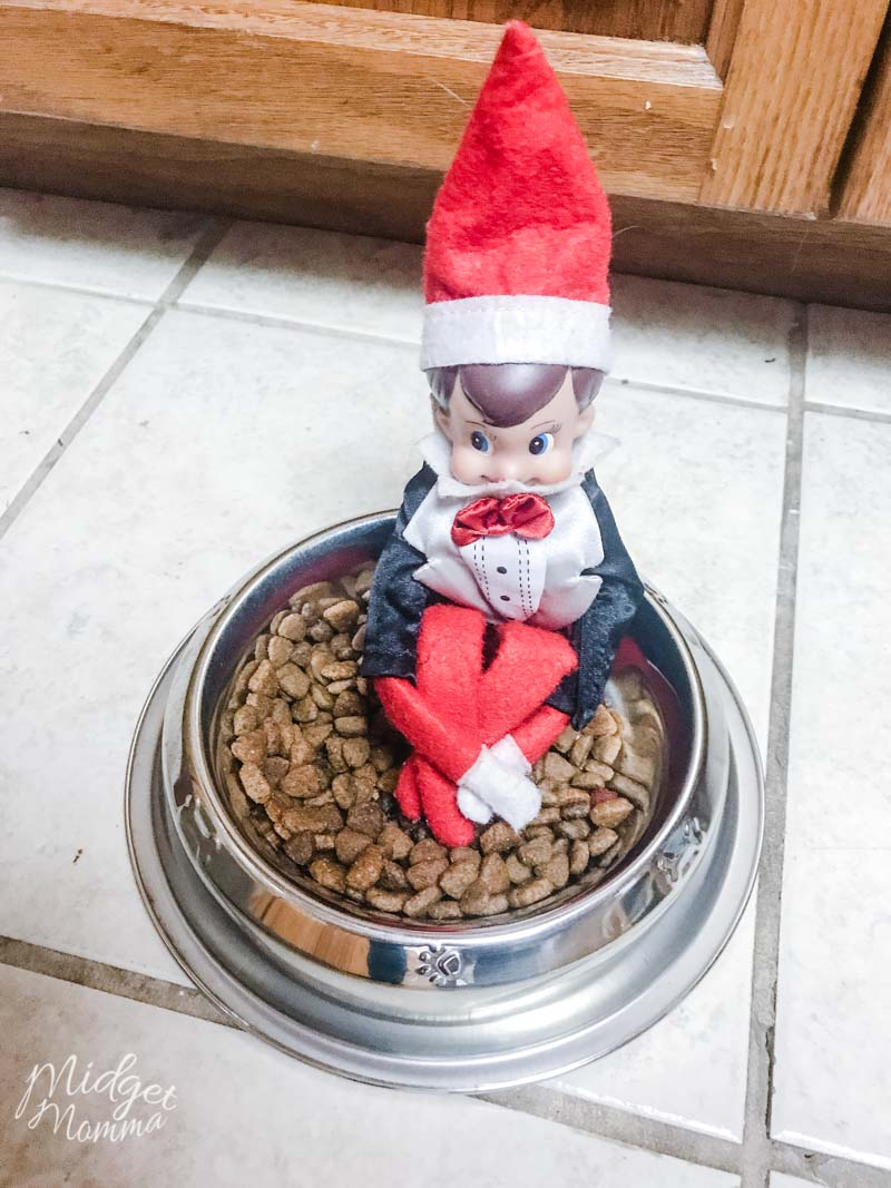 Elf on the shelf Ideas for Toddlers - Elf on the shelf plays in the pet food