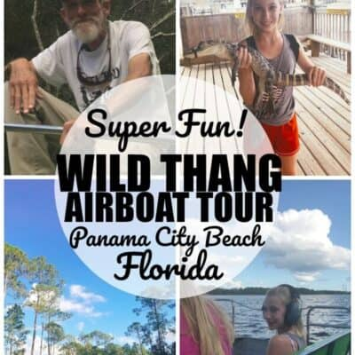 Airboat Tour in Florida with Wild Thang Airboat tour in panama city beach florida