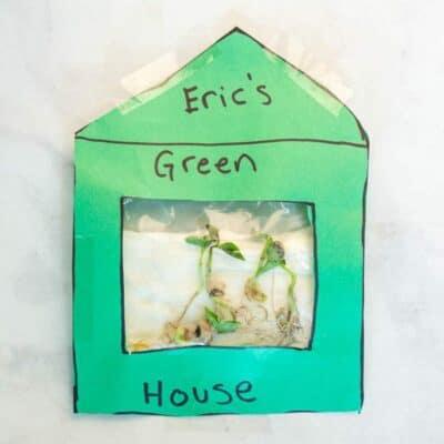 Sandwich Bag Green House
