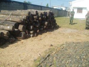 Il faut liquider dans les plus brefs délais les stocks de bois de rose saisis et sécurisés car leur quantité ne cesse de diminuer au fil du temps. (Photo d'archives)
