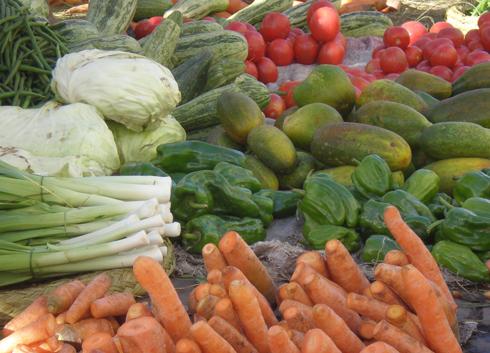 Produits agricoles : Flambée des prix engendrée par une baisse de 20 % de la production