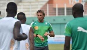 Les Eléphants de Côte d'Ivoire s'entraînent sous la direction du sélectionneur Hervé Renard, le 18 novembre 2014 à Abidjan.