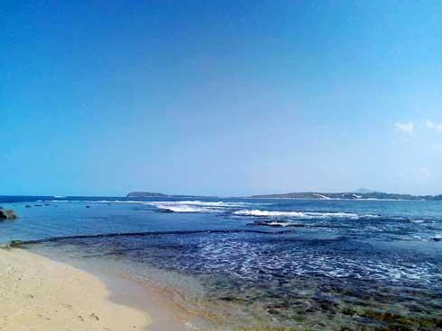 Biodiversité marine : Deux projets de conservation par le gouvernement américain