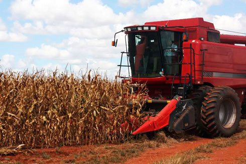 Secteur agricole : Promotion des instruments de lutte contre les risques de catastrophe