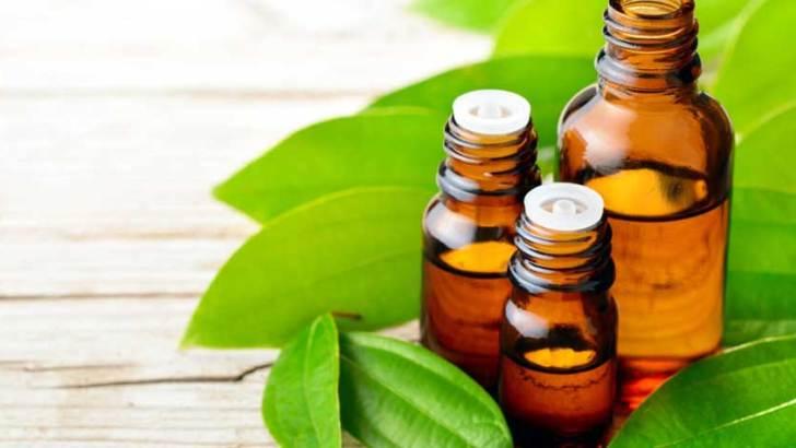Economie verte :Trois huiles essentielles très convoitées dans le monde