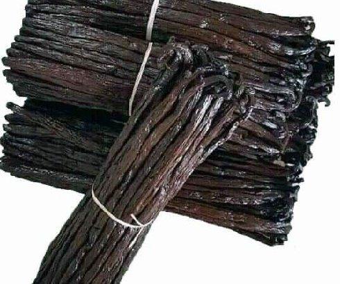 Filière vanille : Une stratégie interventionniste contreproductive selon des opérateurs