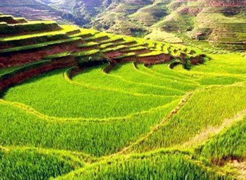 Croissance verte : Madagascar à l'honneur au webinaire régional sur l'éducation entrepreneuriale