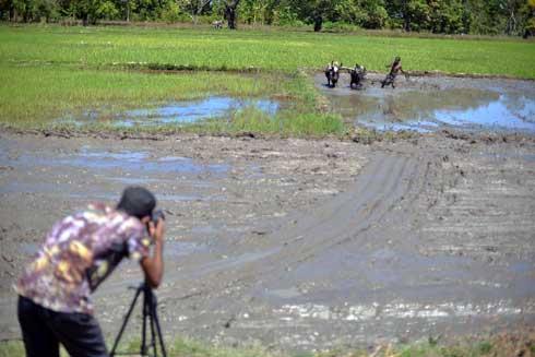 Agriculture : 120 000 dollars offerts par la BAD aux gagnants du concours AgriPitch