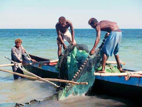 Secteur de la pêche : Une production annuelle d'une valeur de 750 millions USD