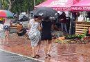 La lluvia no paró las ventas