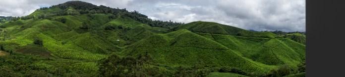 Malaysia-05206