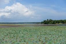 SriLanka-01502