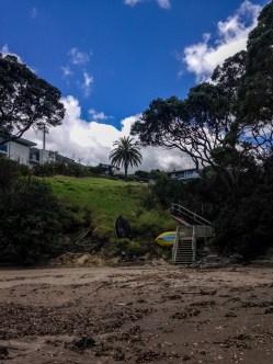 Auckland-4941