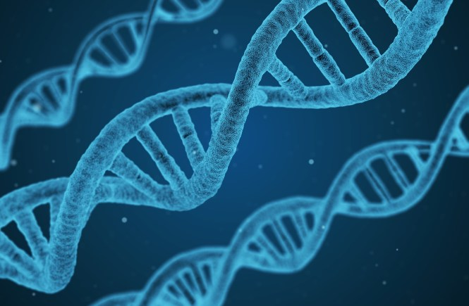 Midlife Sentence | Genetic Testing and Paranoia