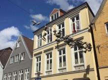 Midlife Sentence | Norderstraße, Flensburg, Germany