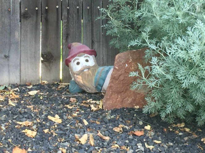 Midlife Sentence: Gnome Haunting