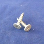 1 in Pancake Screws (250pcs)