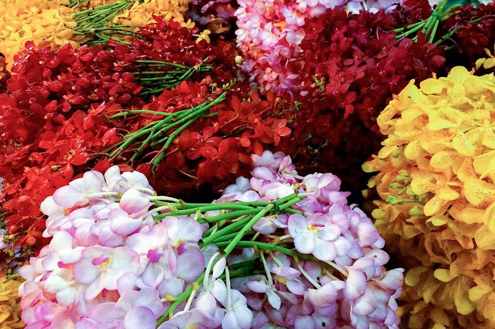 The Bangkok Flower Market is one of my favorite places in the world. A place of orchids galore and the birthplace of long-stemmed roses and rose petals.
