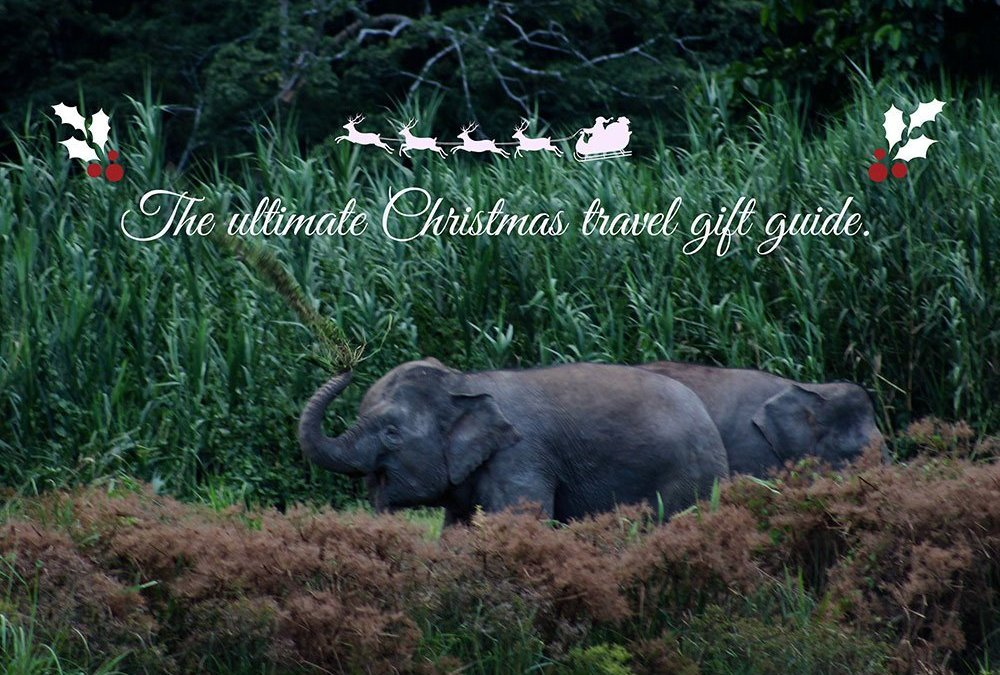 Charity Christmas Gifts for Nature Lovers.