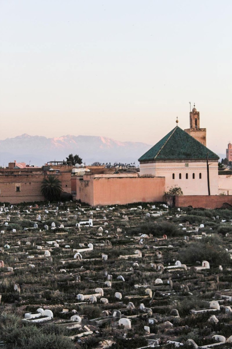 You want to eat all of Marrakech but don't know where to start? Then I recommend you join Marrakech Food Tours for a gourmet treat in the medina.