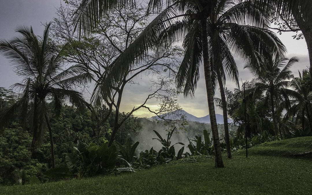 Real Life Jungle Book – A Jungle Hotel in Bali.