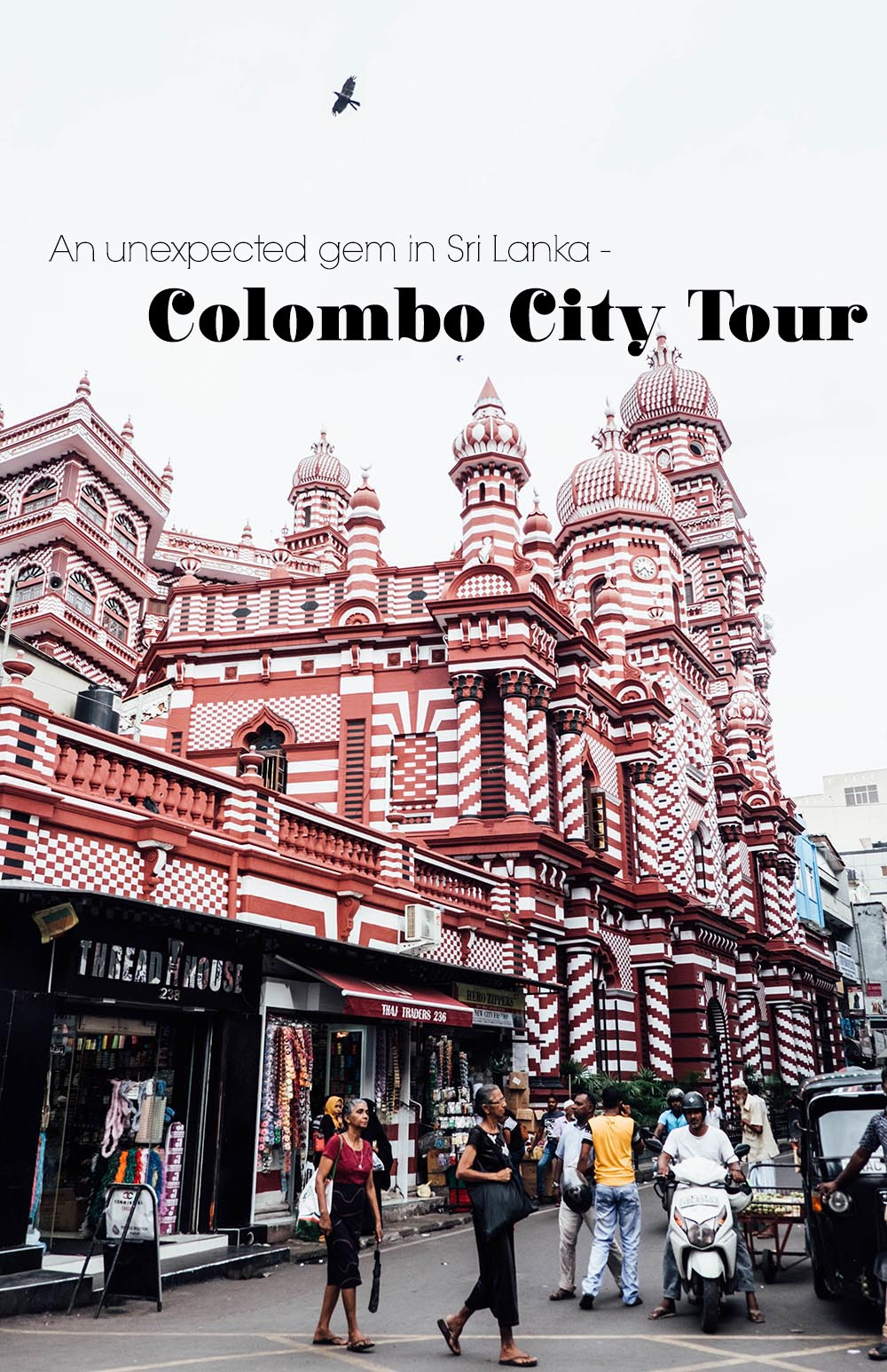 Heading to Sri Lanka? Don't miss out on its capital and stop for one of Ayu in the Wild's Colombo city tours - find true hidden gems! #colombo #srilanka