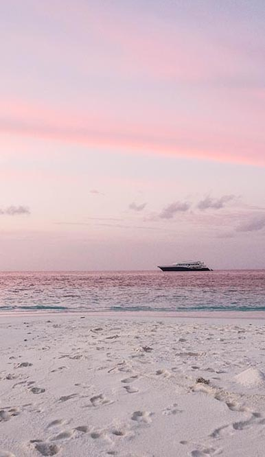Keen to go scuba diving in the Maldives? Of course, you are. Some tips on the best resorts and liveaboard in the Maldives and where to find Nemo.
