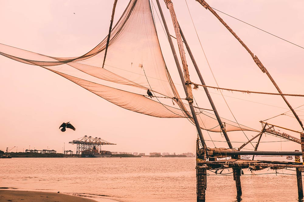 Chinese fishing nets and birds during pink sunset - Great Indian Blog Train