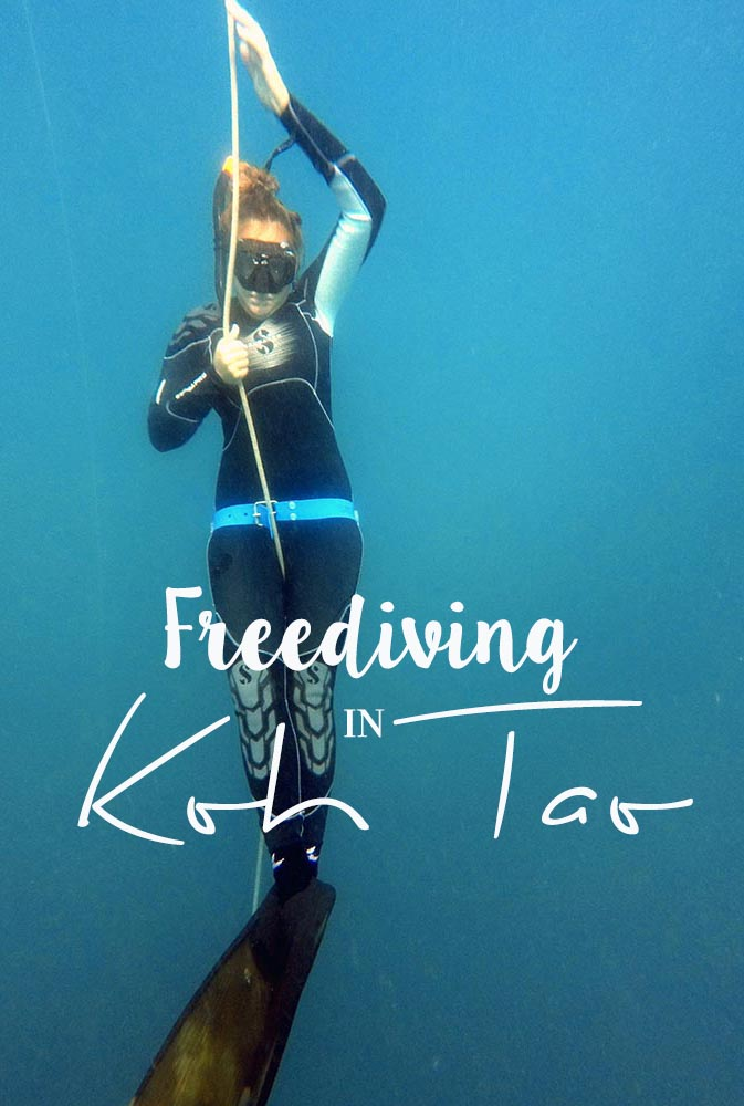 Looking for an Apnea school in Thailand? Check out a Blue Immersion course for freediving in Koh Tao to learn the ins & outs. Learn how to free dive in Thailand, the right freediving equipment, and read more about the whole experience of a freediving course.   #thailand #kohtao #freediving #apnea #diving