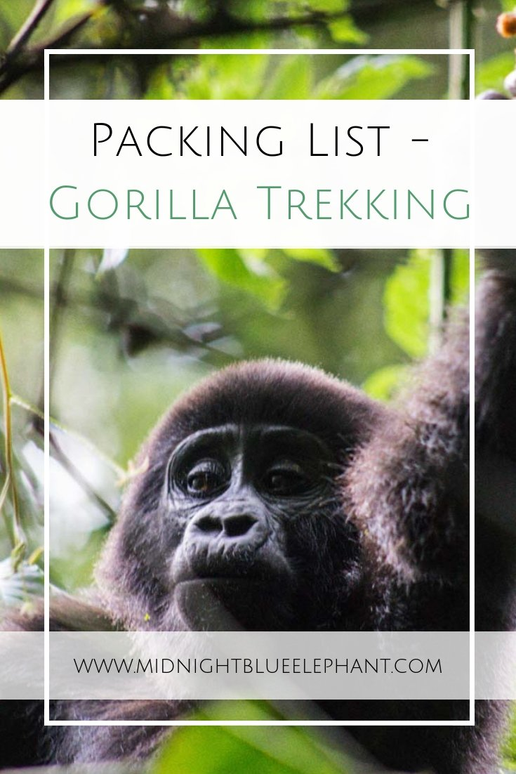 Heading to Uganda, Rwanda or Congo for a gorilla trek and don't know what you will need? My complete packing list for trekking clothes when hiking in the rainforest.  From the best hiking pants to rain gear, backpacks to protect your camera and some extras that will come in handy when packing for a gorilla trek. #packinglist #trekkingclothes #hikinggear #rainforest #gorillatrek #uganda #bwindi
