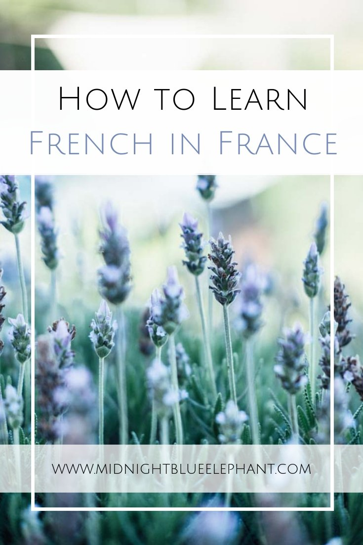 Learning French in France is the best way to get a hang of the language. Check French in Normandy, a language school in Rouen, for courses for all levels. #french #france #normandy #rouen #learningfrench