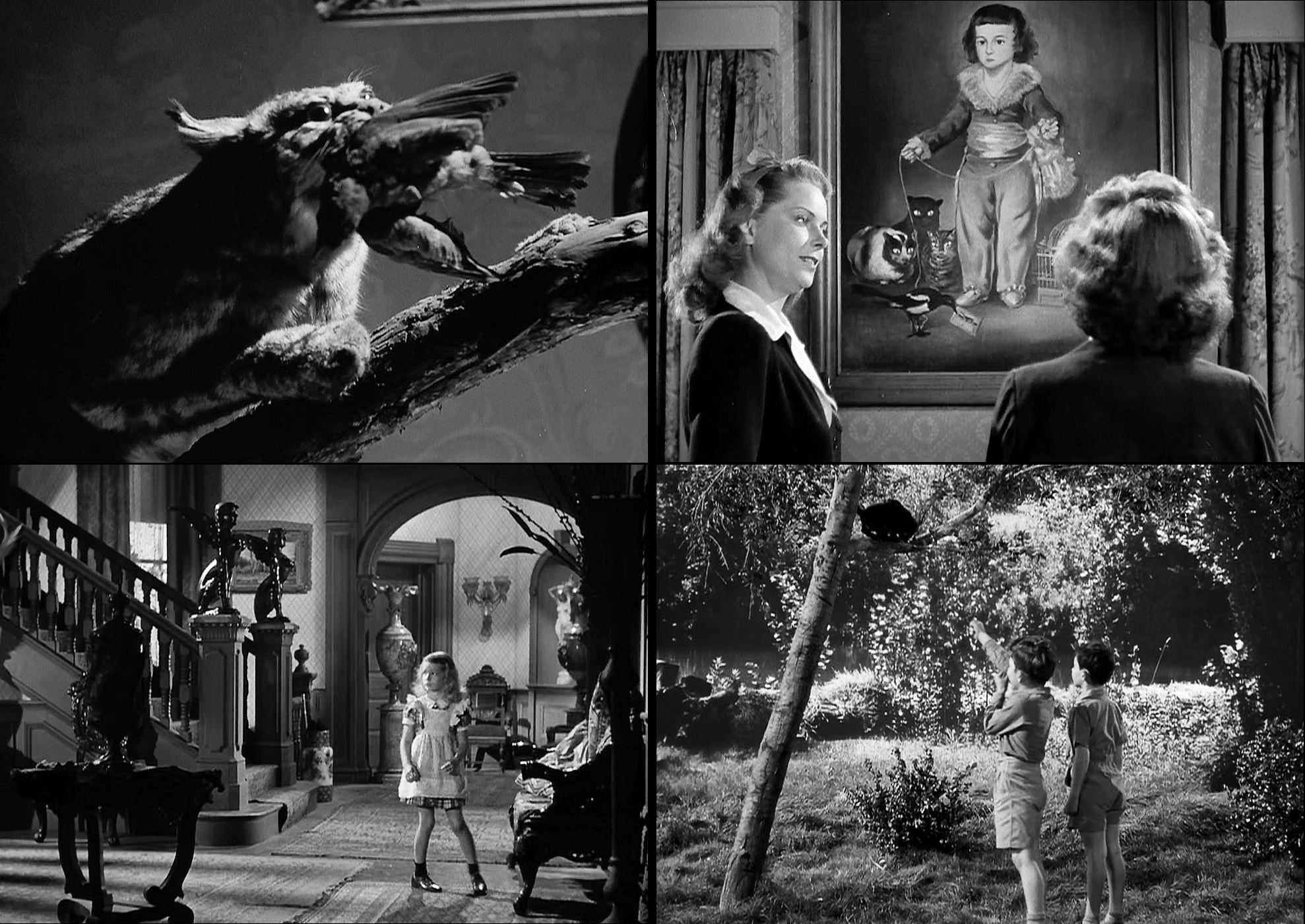 Image result for The Curse of the Cat People movie review
