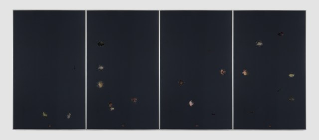 Rain over Water, 2014. Aluminum, safety glass, glue, spider legs, latex, RFID Chip. Four panels, each: 64 ¼ x 38 ⅞ x 1 ½ inches; Installed: 64 ¼ x 155 ¼ x 1 ½ inches.