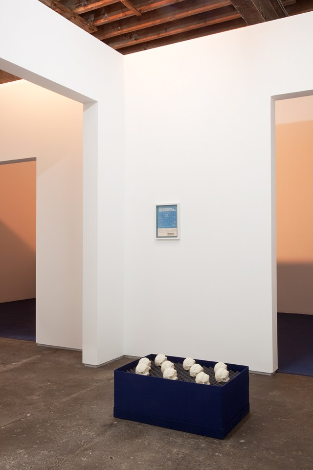 David Catherall, installation view. Foreground: モンチッチ 頭部, 2012. Ten glazed, porcelain slip casts, foam, buckram covered box. 21 x 17 x 21 inches. Background: Manpower, 2012. Magazine page, artist frame. 10 ¼ x 13 ½ inches framed.