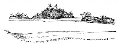 John Cammeron's Odyssey