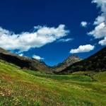 miel vallée d'incles, miel andorre, miel pyrénées, miel de montagne, miel de haute montagne