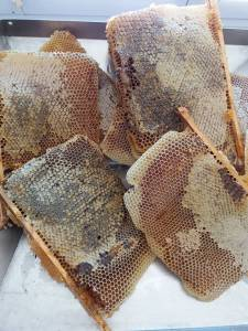 miel en rayon, miel avec cire, miel en brèche, miel au couteau, miel avec morceau de rayon, miel avec morceau de ruche