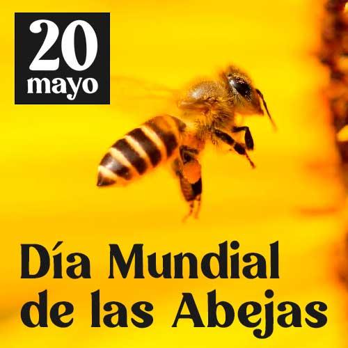 dia-mundial-de-las-abejas-portada