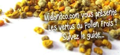 pollen-frais-congelé2