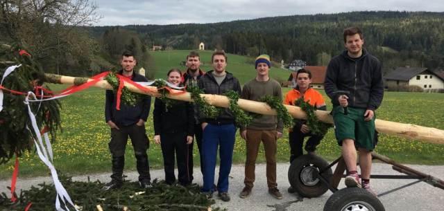 Maibaumaufstellen der Landjugend Miesenbach