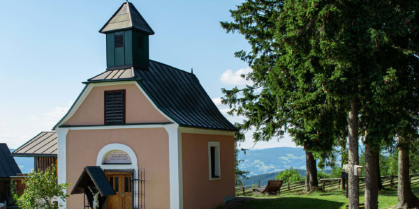 Wildwiesenhof Imagebilder 2020 6