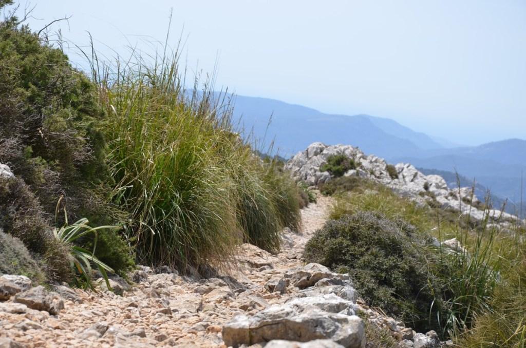 Mallorca wandern