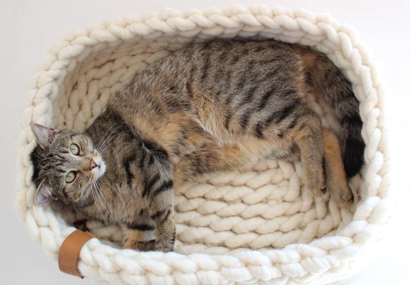 Katzenbett Wolliger Eckbert