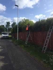 Hedge Trimming Giffnock